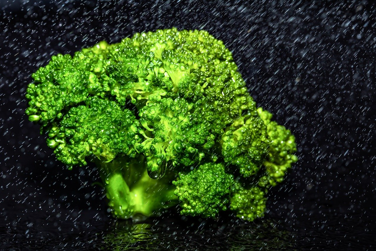 broccoli, kohl, vegetables