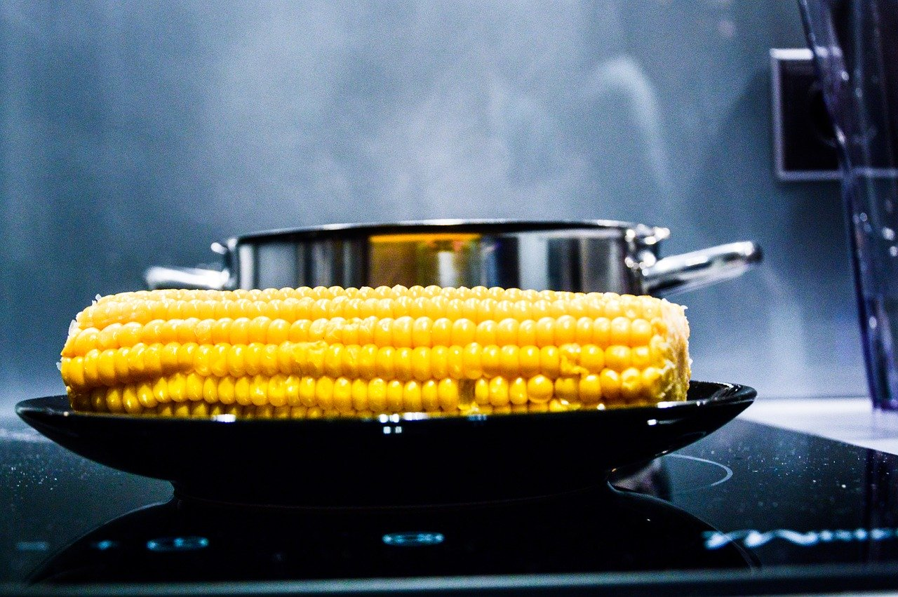 corn, corn on the cob, stove