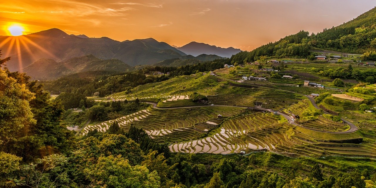 landscape, rice terraces, sunset